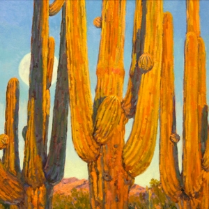 Art of the Saguaro
