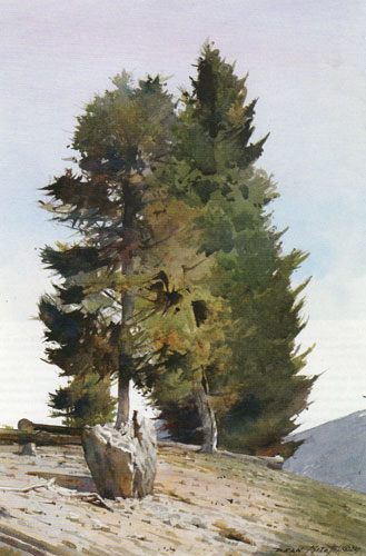 "Dean Mitchell, Colorado Pines, watercolor, 15""x10"""
