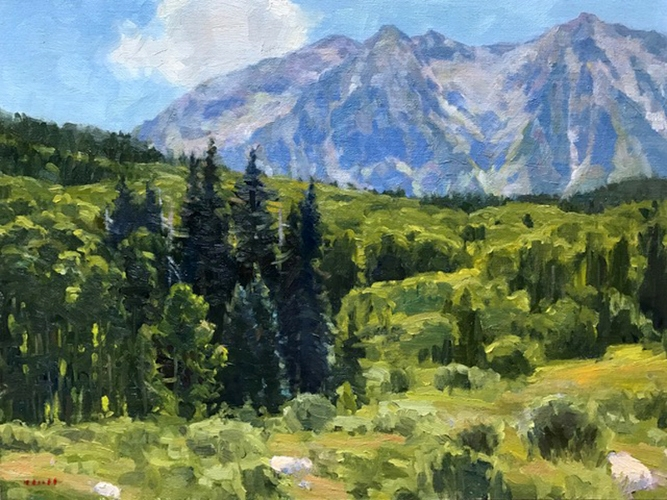 Free-campsite-near-Crested-Butte